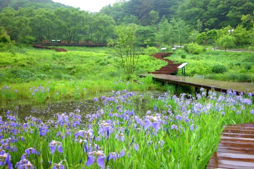 평강식물원 2.jpg