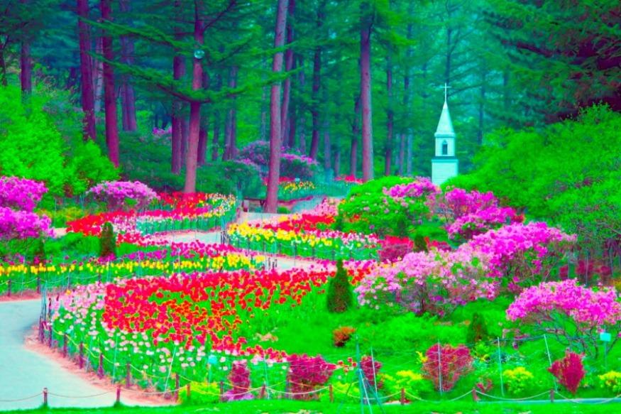 아침고요수목원 2.jpg