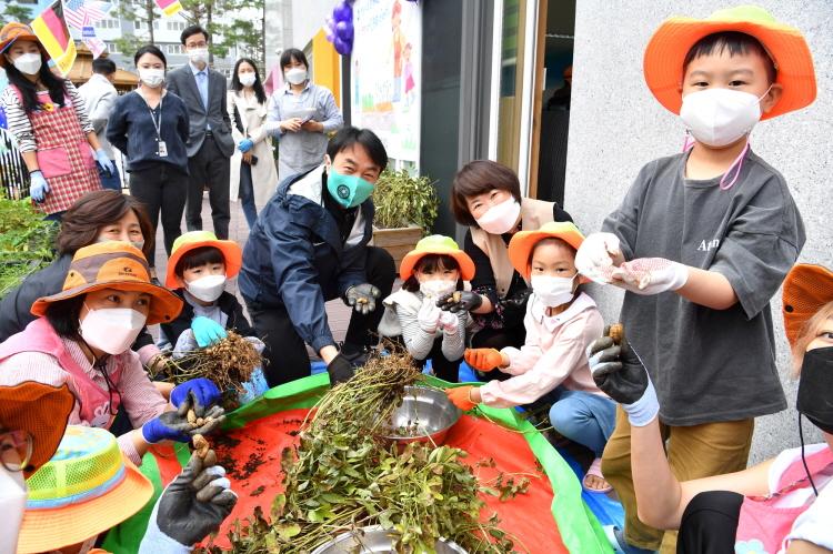 하남시, 어린이집과 함께하는 상자텃밭 땅콩 수확 체험 (3).JPG